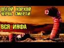 Олгой Хорхой Гигантский червь смерти вся инфа