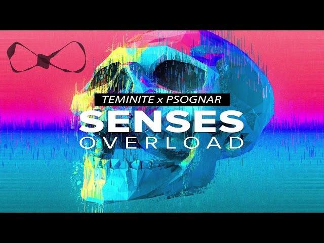 Teminite x PsoGnar - Senses Overload Lyrics