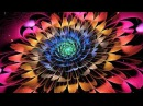639Hz Heal Relationships Attract Love Positive Energy Cleanse Old Negative Energy