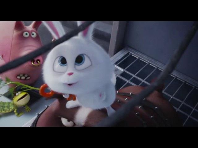 Кролик Снежок