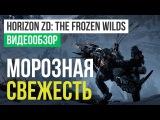 Обзор игры Horizon Zero Dawn: The Frozen Wilds