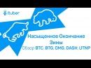 Насыщенное Окончание Зимы Обзор BitCoin BTC BitCoinGold BTG OmiseGO OMG DASH Universa UTNP