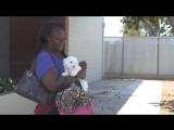 Бездомной женщине дали денег. Все очень удивились, узнав, на что она их потратила!
