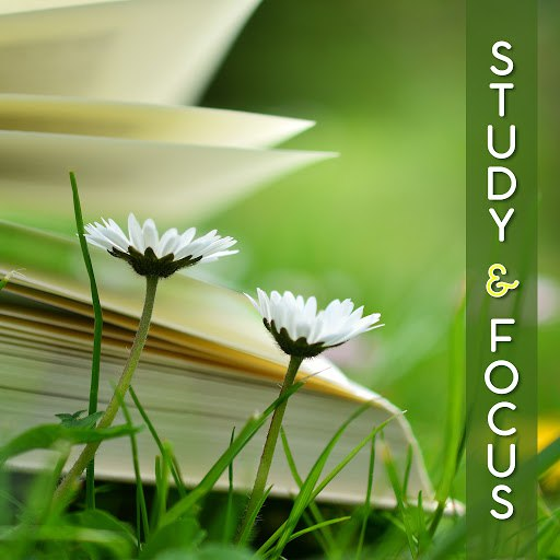 Deep Focus альбом Study & Focus – Music for Learning, Keep Focus & Improve Memory, Relaxing Music for Study