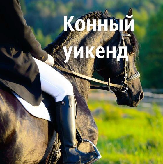 Афиша Конный уикенд