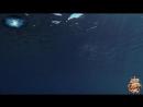 ♛♫♥ Mike Demirele - The Chosen One (Original Mix) (Pulsar Recordings) ♥♫♛