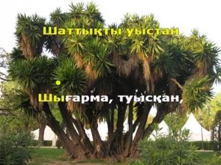 Тоқтар Серіков - Сыған серенадасы (қазақша караоке, минус).mp4