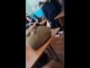 Ангелина Молчанова Live