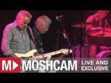 Icehouse - Crazy (Live in Sydney) Moshcam
