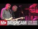 Icehouse - Crazy (Live in Sydney) | Moshcam