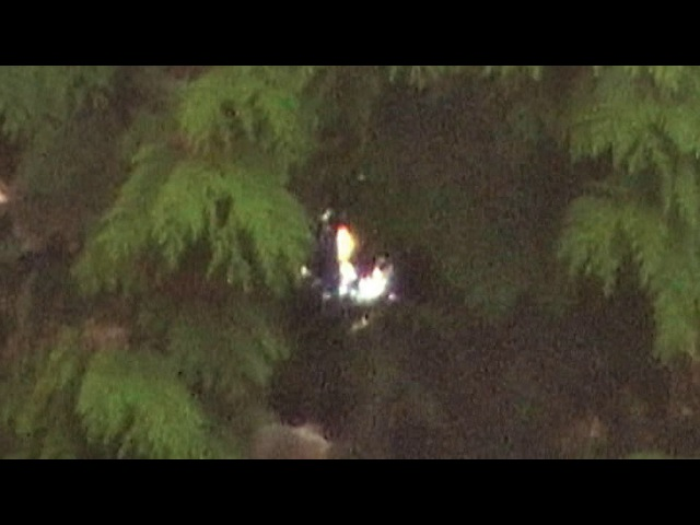 Cosmic Conifer Creates Amazing (UFO) Light Displays (Pt.1) June/July 2017