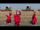 Полевой концерт для механизаторов и комбайнеров ТОО Караман-К с.Восток и Майский (Карасуский район)