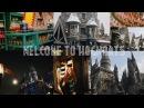 Самое волшебное видео✨Harry Potter VLOG⚡️Моя коллекция📚 Встретила Тома Фелтона!