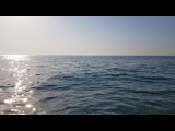 frah_dema video