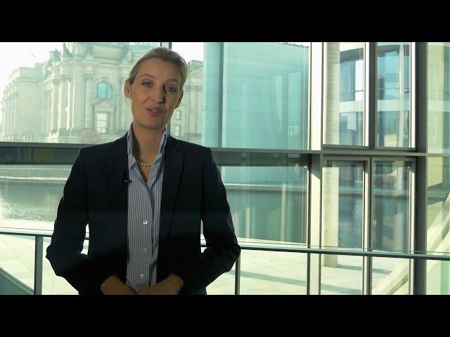 Alice Weidel Warum ließ sie Thorsten Schulte nach diesem Video fallen