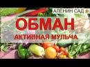 КРУГОМ ОБМАН 😭 Активная мульча или компост / Введение в заблуждение?