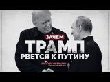 Зачем Трамп рвется к Путину (Руслан Осташко)