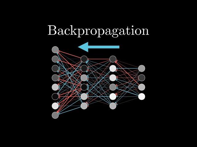 iris and backpropagation