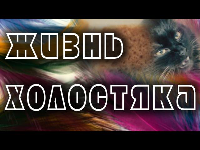 Холостяцкая жизнь видеоблогера тест объектива yongnuo f 50 mm 1 8