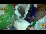 Восемь с половиной кило наркотиков хранила девушка в квартире в Мытищах