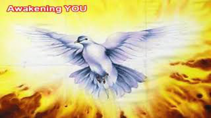 AA MICHAEL! ~ THE EVENT HORIZON MASS ASCENSION ~ WAVE X ~ MESSAGES FROM ARCHANGEL MICHAEL