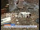 АНОНС кощунственная свалка неизвестные выбросили украденные на кладбище памятники в реку в Ленинском районе