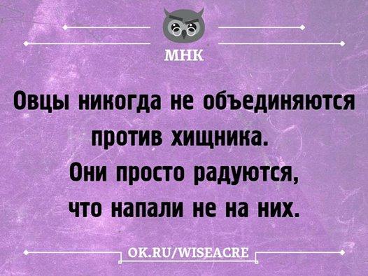 https://pp.userapi.com/c840133/v840133145/8fa05/6P4SDBCUr1Y.jpg