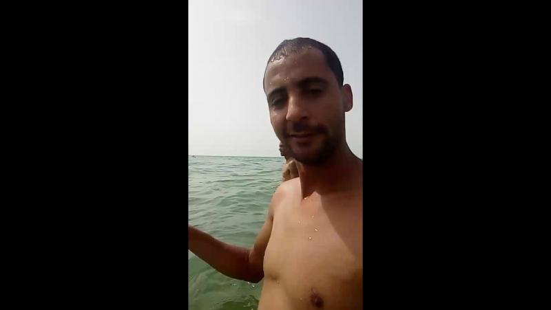 Med-Ali Souissi - Live