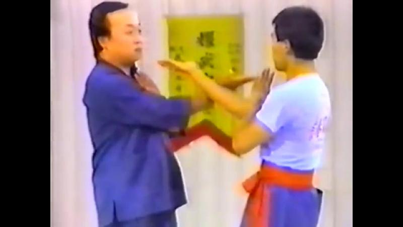 Августин Фонг винчун 3 одиночная техника сию лим тау Часть 2