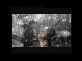 Chris Rea - La Passione. Official video