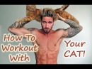 HOW TO WORKOUT WITH YOUR CAT!