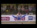 Олег Верняев Parallel Bars 2017 Cottbus World Cup
