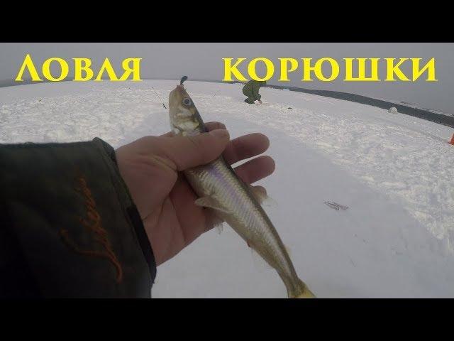 Зимняя рыбалка / Ловля корюшки / Winter fishing / smelt Fishing