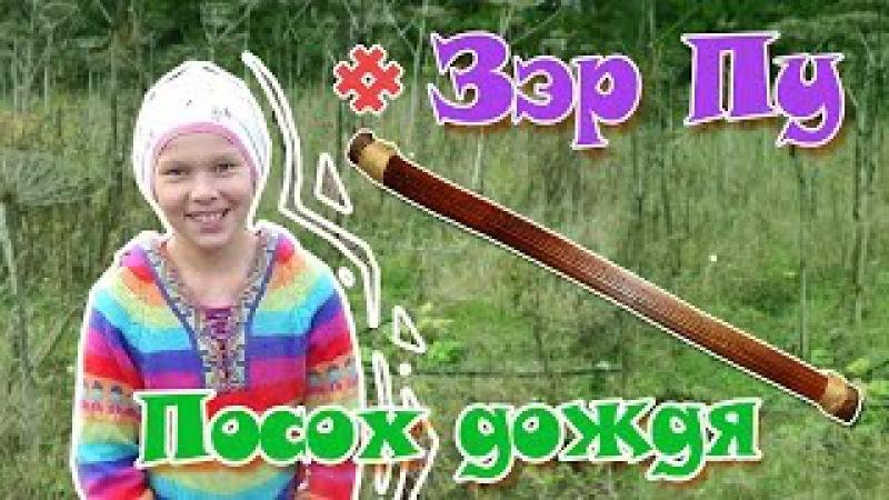 Творим чудеса Зэр Пу из борщевика Rainstick флейта дождя посох дождя дождевая палка