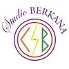 Центр Развития и творчества Studio BERKANA