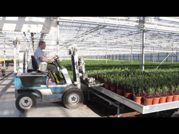 Van Schie Potlelies Company Move