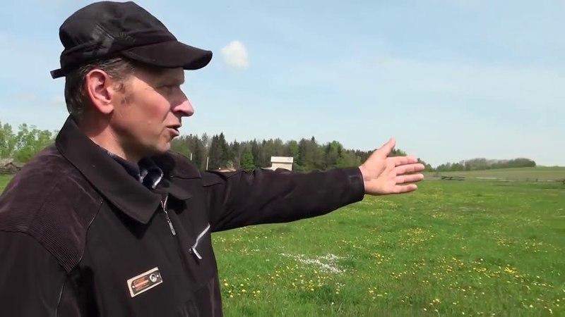 Экстренный выпуск Массовая потрава пчел, животных, детей на Буковине!