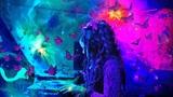 Forest ~ Dark psytrance mix at Trance Orient Express