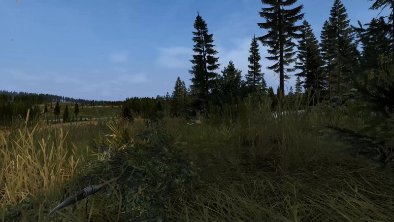 Dayz TOP Ghillie Suit