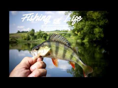 Рыбалка на реке Дон, плюс в видео можете посмотреть рецепт приготовления запеченной картошки.