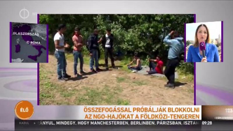 Már megint sikítva menekült élő adásban egy olasz riporternő