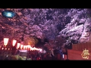 ♛♫♥ Masaru Hinaiji feat. Orie Yoko - Haru (Spring Comes) (Original Mix) (Pulsar Recordings) ♥♫♛