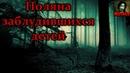 Истории на ночь Поляна заблудившихся детей
