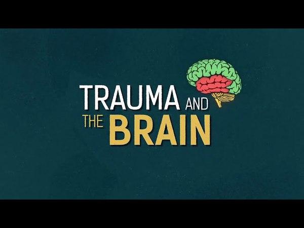 Trauma and the Brain (Русские субтитры / Russian Subtitles)