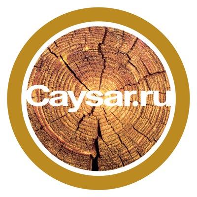 Caysar Antex