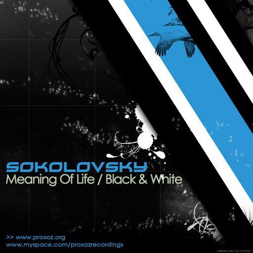 SOKOLOVSKY альбом Meaning Of Life / Black & White