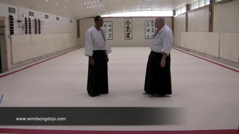 Aikido Atemi Waza - 1