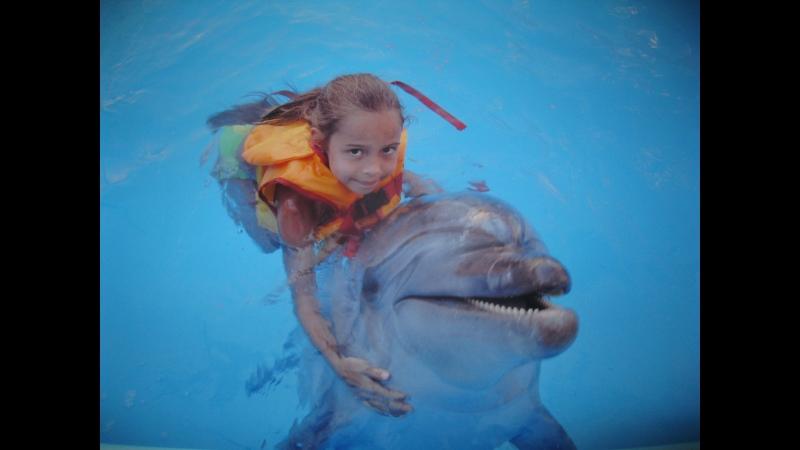 Дельфинарий 2013 г. Феодосия