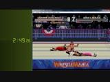 WWF Arcade Game 5-14