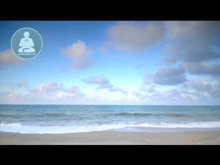 Две минутки медитации для гармоничного, сука, дня